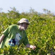 Adam Porter in the red mangroves