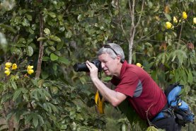 Professor Steve McCormick taking photographs in Belize
