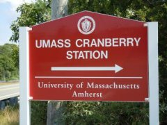 UMass Amherst Cranberry Station Sign