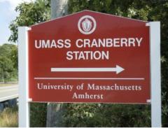 UMass Amherst Cranberry Station Sign