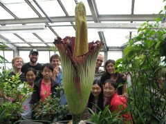 PB graduate students with titan arum