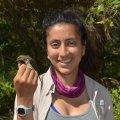 OEB PhD student, Mariamar Gutierrez, with a nano-tagged Northern Waterthrush